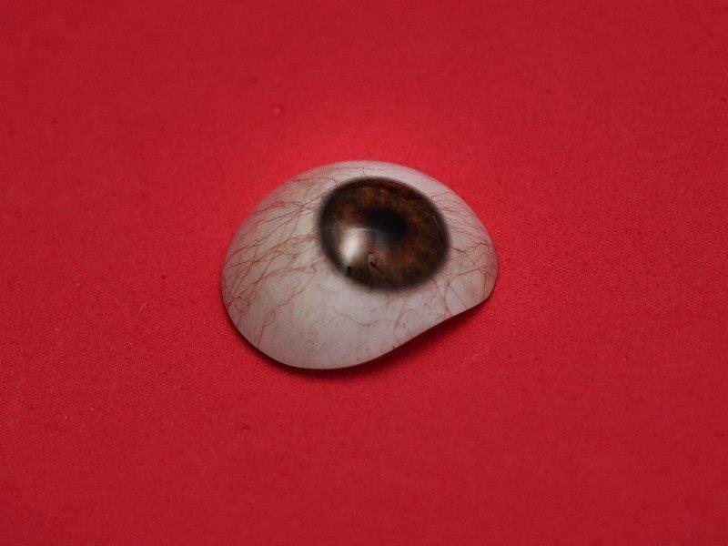 Prótese ocular preço